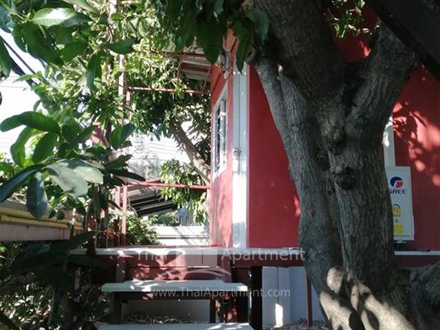 บ้านต้นไม้ดอนเมือง รูปที่ 3