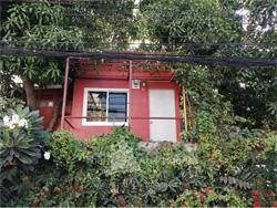 บ้านต้นไม้ดอนเมือง รูปที่ 2
