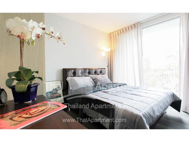 Click Denim Apartment image 3