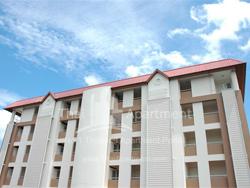 88 Terrace Apartment image 2